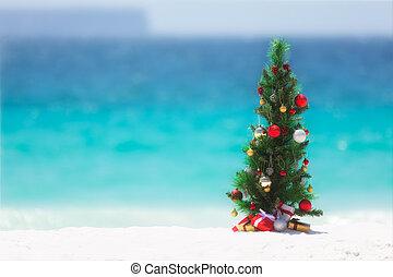 χριστουγεννιάτικο δέντρο , στην παραλία , μέσα , καλοκαίρι