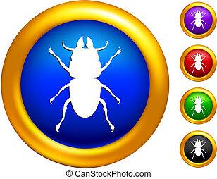 χρυσαφένιος , σύνορα , έντομο , εικόνα , κουμπιά