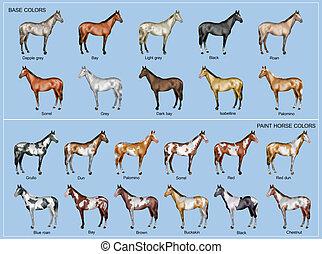 χρώμα , άλογο , χάρτης