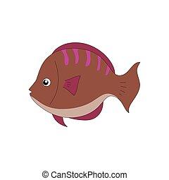 χρώμα , χαριτωμένος , fish, καφέ