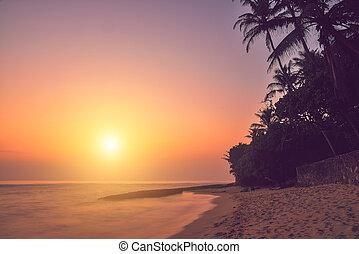 όμορφος , ηλιοβασίλεμα , σρι λάνκα