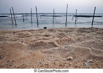 όμορφος , θαλασσογραφία , σρι λάνκα