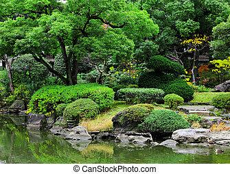 όμορφος , ιαπωνία , κήπος