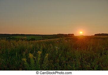 όμορφος , καλοκαίρι , επαρχία , ηλιοβασίλεμα