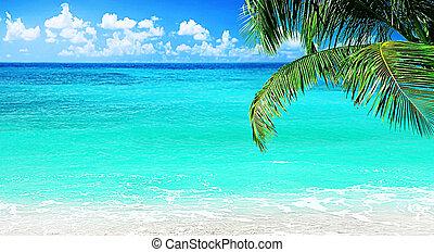 όμορφος , παραλία