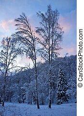 όμορφος , χειμώναs , γραφική εξοχική έκταση.