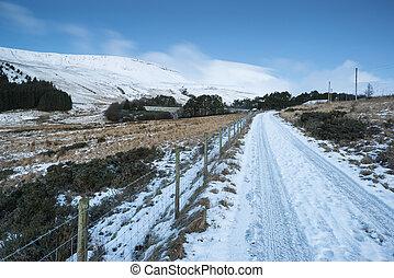 όμορφος , χειμώναs , επαρχία , πάνω , δασικός , pre-dawn,...