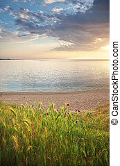 όμορφος , seascape., φύση