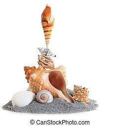 όστρακο , βούκινο , sand., απομονωμένος , αχανής έκταση θημωνιά