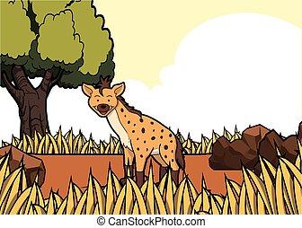 ύαινα , savanah, κυνηγετική εκδρομή εν αφρική