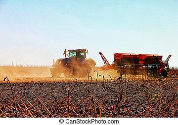 ώριμος , εργαζόμενος , agriculture., sunflower., θεριστής , ενώνω , συγκομιδή
