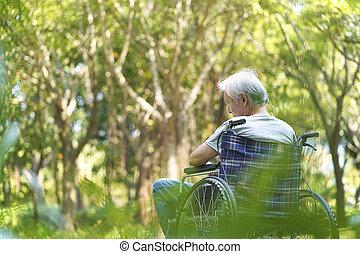 азиатский, инвалидная коляска, сидящий, человек, старшая