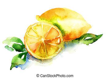 акварель, иллюстрация, of, лимон