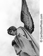ангел, держа, , книга