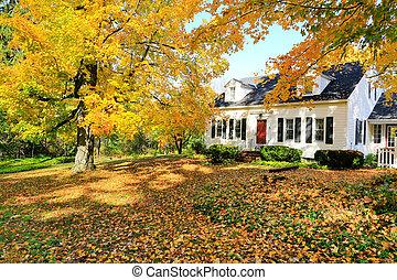 англия, классический, дом, американская, fall., экстерьер,...