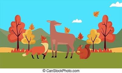 анимация, здравствуйте, осень, animals, лесистая местность, ...
