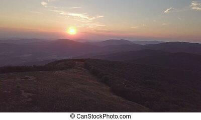 антенна, красочный, над, закат солнца, лес, пейзаж, посмотреть