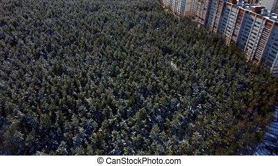 антенна, area., лес, лесистая местность, посмотреть, зима, ...
