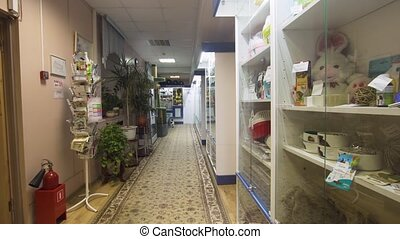 аптека, магазин, в, , ветеринарный, clinic.