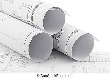 архитектор, rolls, and, plans, строительство, план, рисование
