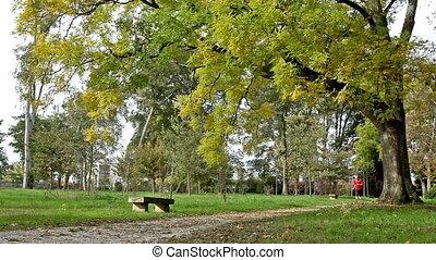 бегун, парк