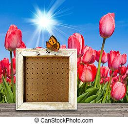 белый, рамка, на, деревянный, пол, над, весна, пейзаж