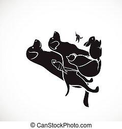 белый, background., птица, попугай, illustration., isolated, собака, значок, pets, гудящий, редактируемые, слоистый, группа, логотип, вектор, -, кот, кролик, легко, домашнее животное, или