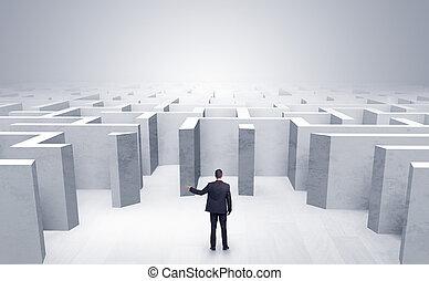 бизнесмен, не могу, принимать решение, which, вход, он,...