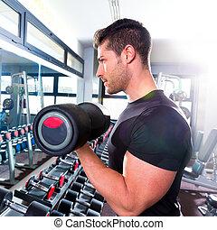бицепс, разрабатывать, фитнес, гантель, гимнастический зал, человек