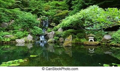 ботанический, дзэн, сад, japanes