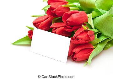 букет, tulips, красный