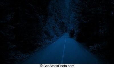 вверх, trees, через, лес, выше, ночь, поднимающийся, дорога