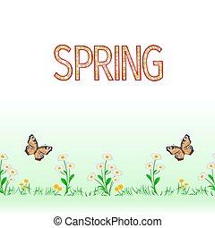 вектор, граница, задний план, весна, бабочка, маргаритка, бесшовный