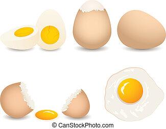 вектор, яйцо, коллекция
