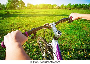 велосипедист, в, , зеленый, поле, на, , bike., путешествовать