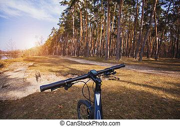 велосипедист, rides, в, , лес, на, , bike.