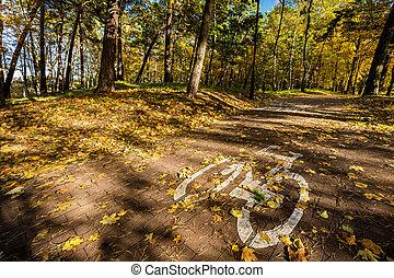 велосипед, дорога, знак, в, парк, на, осень