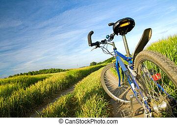 велосипед, на, , лето, поле