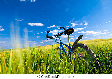 велосипед, на, , поле