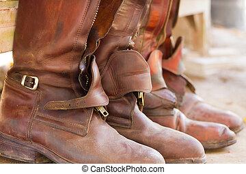 верховая езда, ботинки, готов, для, игра