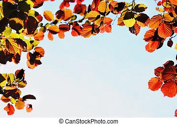 весна, бургундия, листва