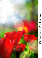 весна, изобразительное искусство, задний план
