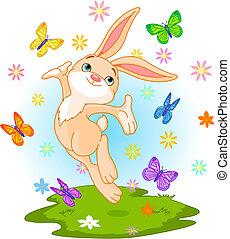 весна, кролик
