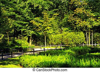 весна, парк, время