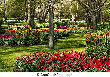 весна, парк, красочный