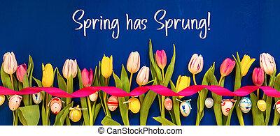 весна, пасха, has, текст, красочный, тюльпан, яйцо, баннер, захмелевший