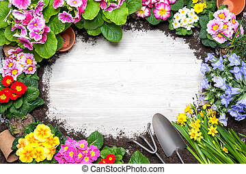 весна, рамка, цветок, садоводство, инструменты
