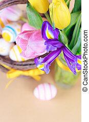 весна, цветы, вверх, закрыть