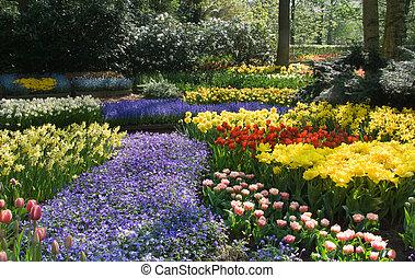 весна, blossoming, парк