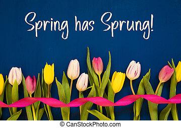 весна, has, текст, красочный, тюльпан, синий, лента, захмелевший, задний план